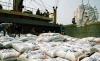 Thành lập Tổ công tác điều hành xuất khẩu gạo